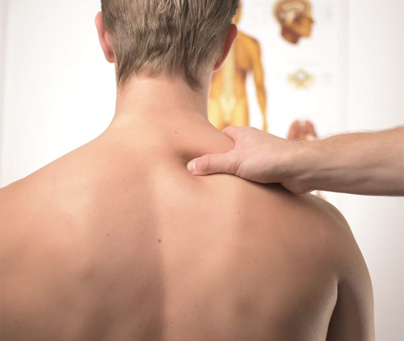 Chiropractor – Great Experience